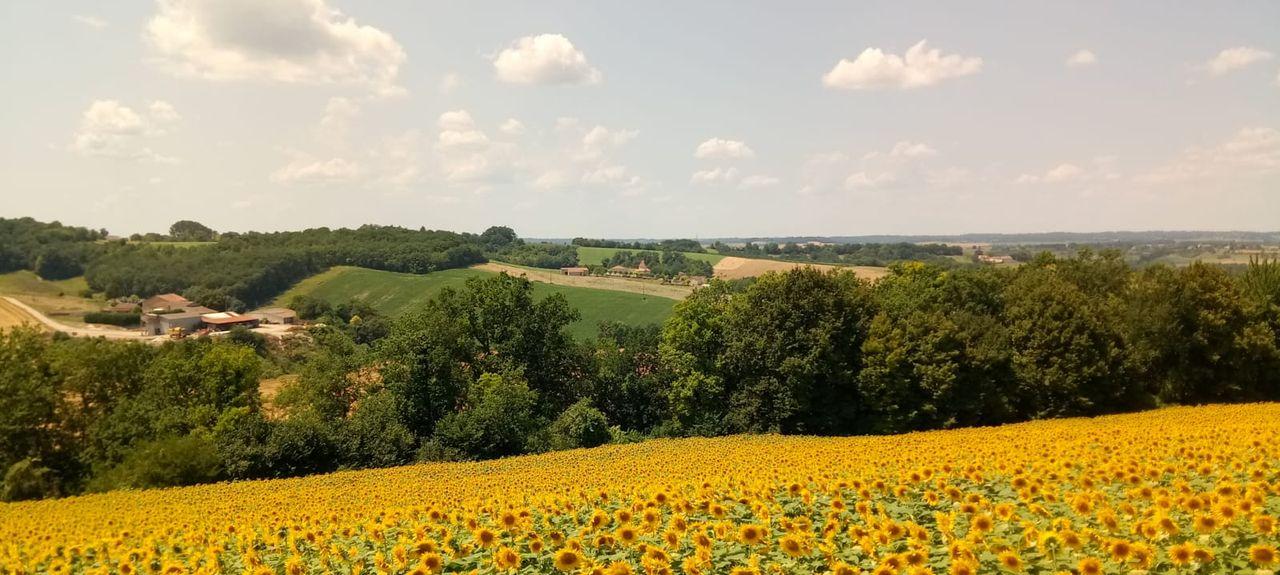 Le Fouilloux, Nouvelle-Aquitaine, France