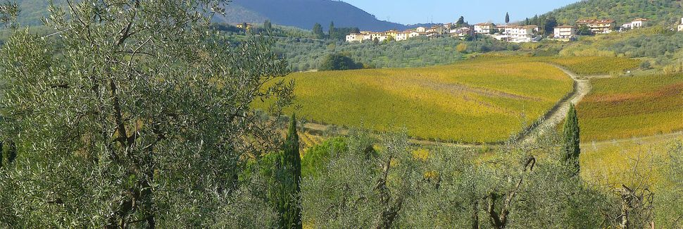 Lampaggio, Toscane, Italie
