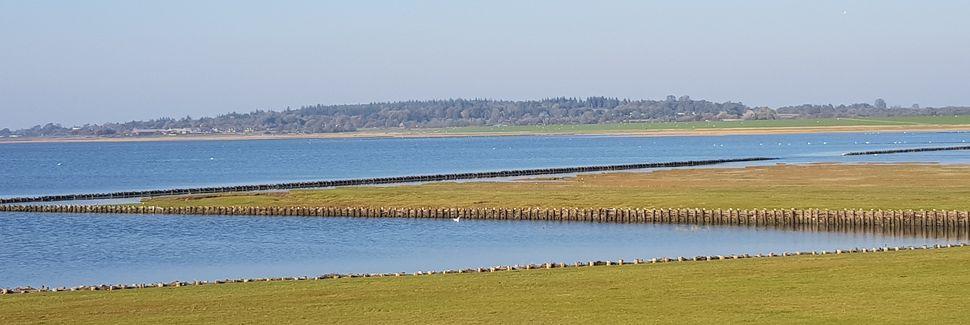 Almdorf, Schleswig-Holstein, Allemagne