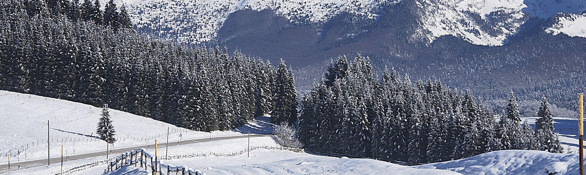 Prowincja Pordenone, Friuli-Wenecja Julijska, Włochy