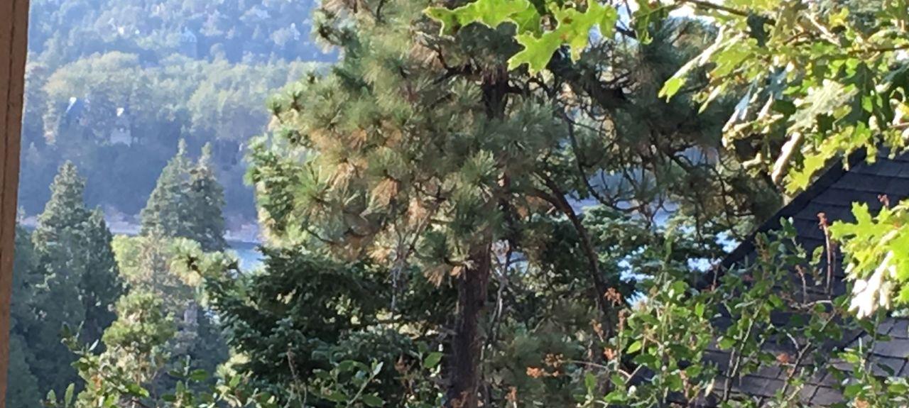 Blue Jay, CA, USA