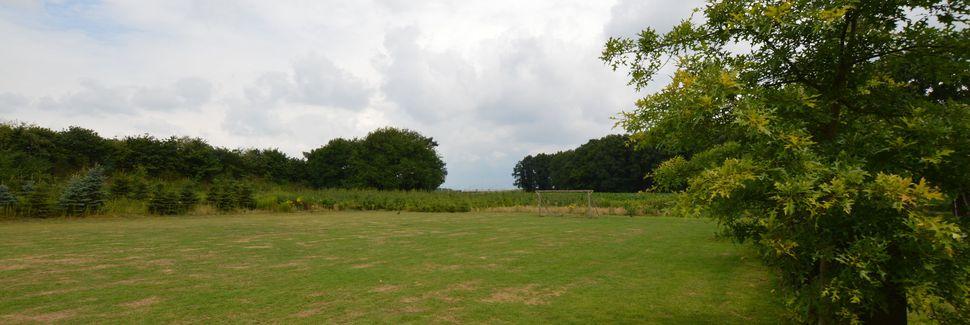 Moergestel, Noord-Brabant, Holland
