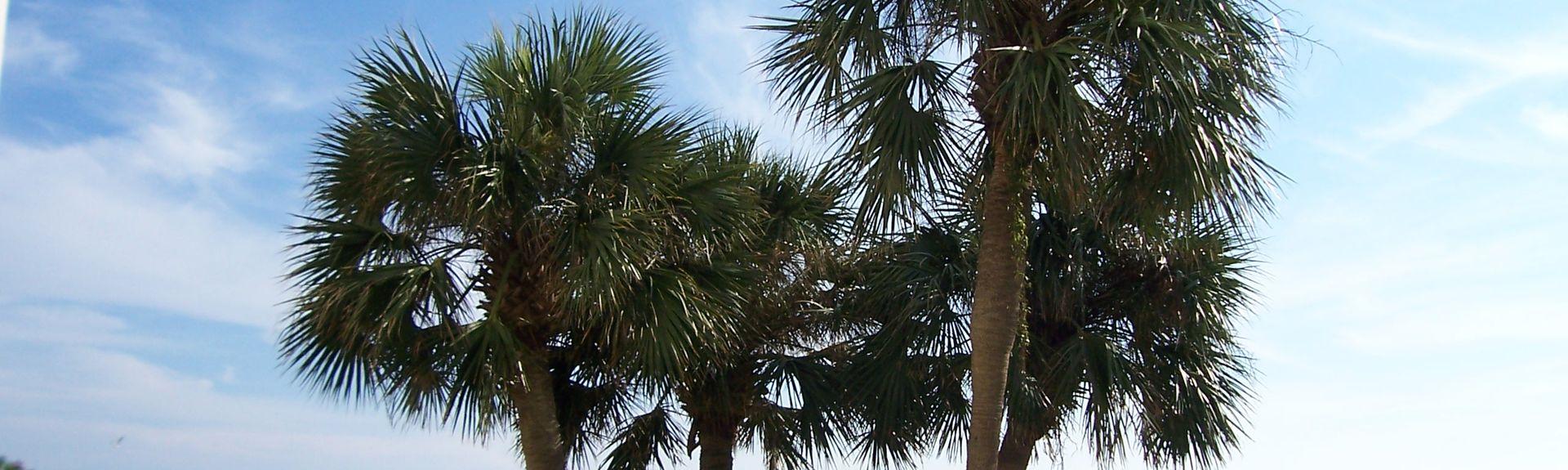 Villa Primera, Pensacola Beach, FL, USA