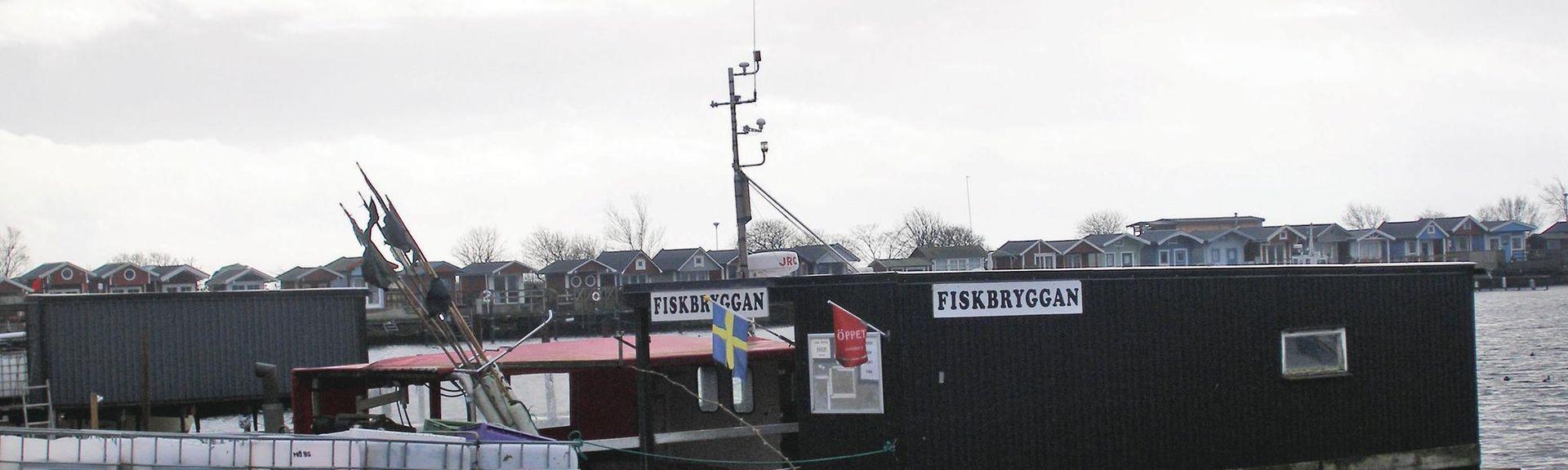 Swedbank Stadion, Malmø, Skåne län, Sverige