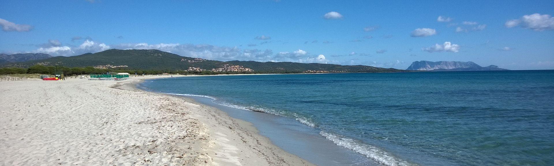 Strand Cala Brandinchi, San Teodoro, Sardinien, Italien