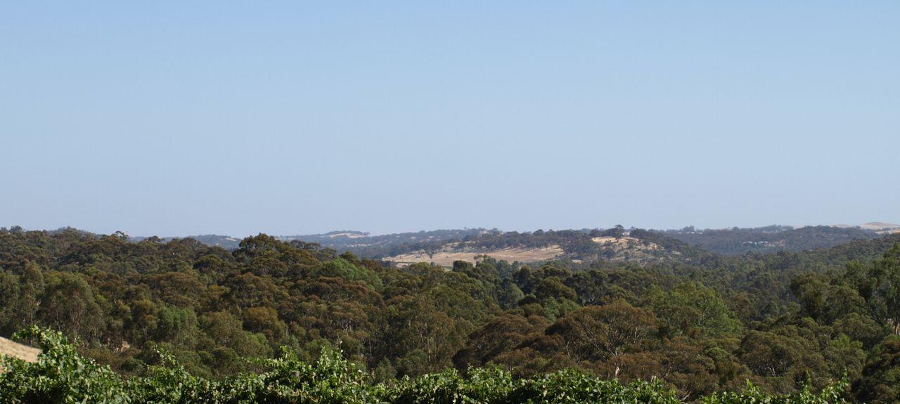 Clare SA, Australia