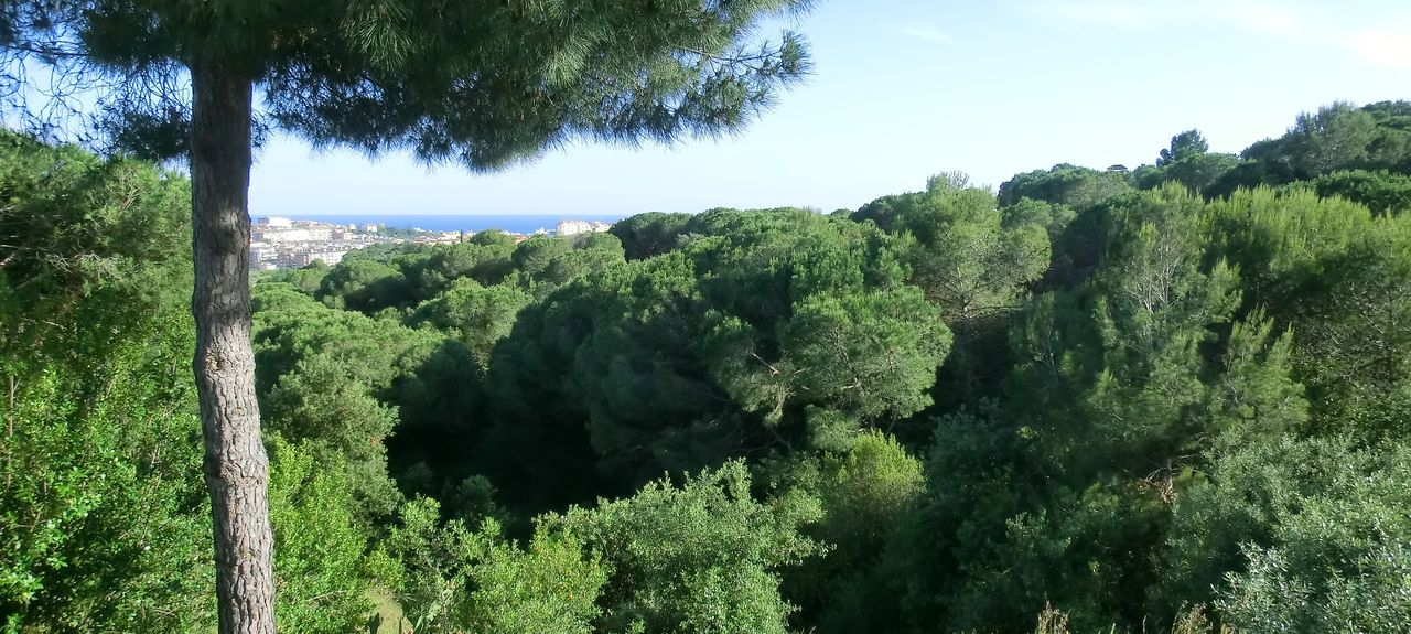 Costa Brava Golf Club, Santa Maria de Solius, Catalonië, Spanje