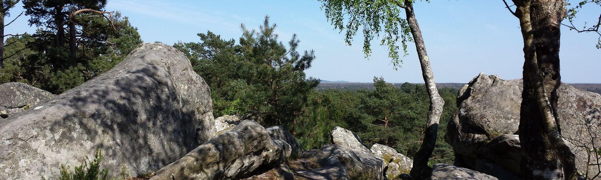 Fontainebleau, Ile-de-France, Frankreich