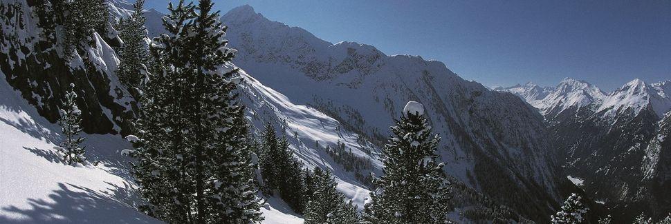 Tyrolen, Österrike