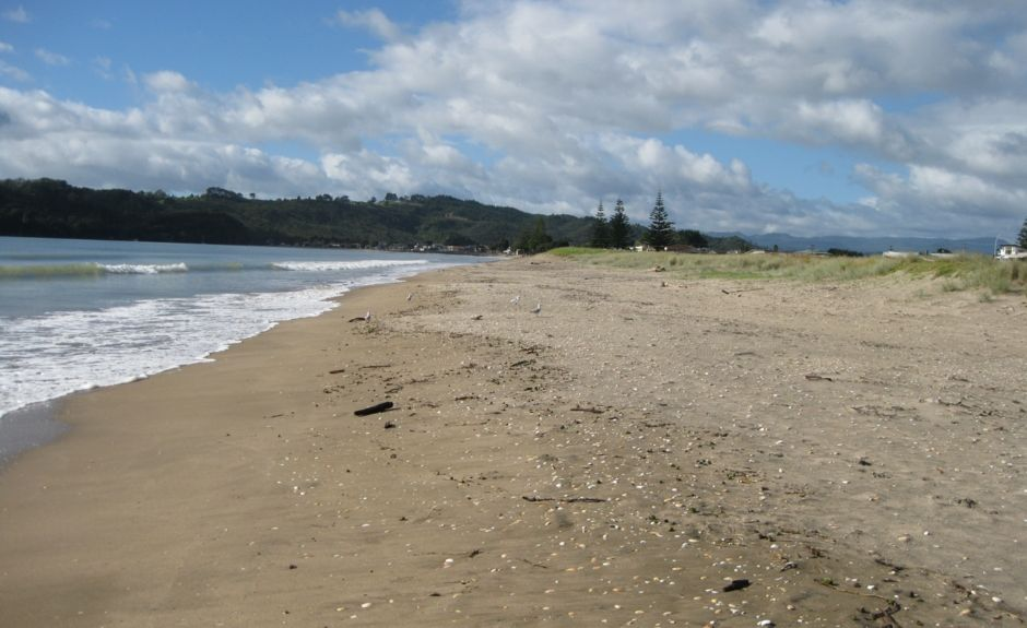 Pauanui Beach, Coromandel Forest Park, Waikato, New Zealand