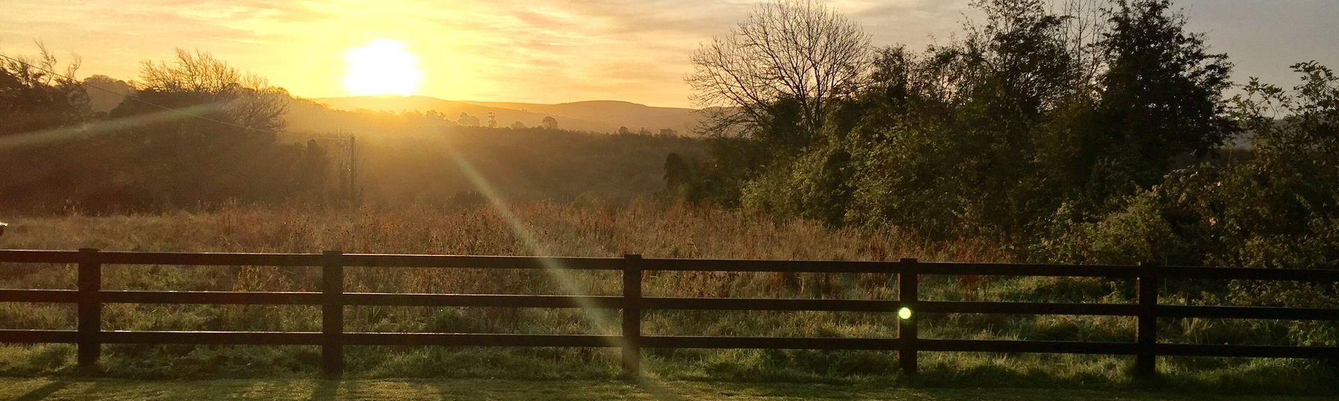 Ballard Organic Farm, Kilbeggan, Westmeath (distrito), Irlanda