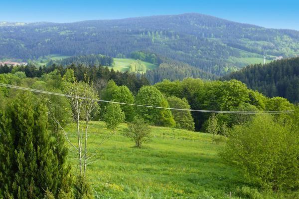 Glashütt, Sankt Englmar, Niederbayern, Bayern, Germany