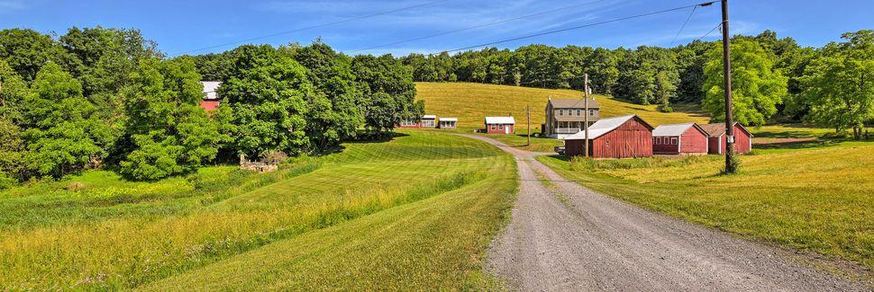 Dorney Park & Wildwater Kingdom, Allentown, Pennsylvania, Vereinigte Staaten