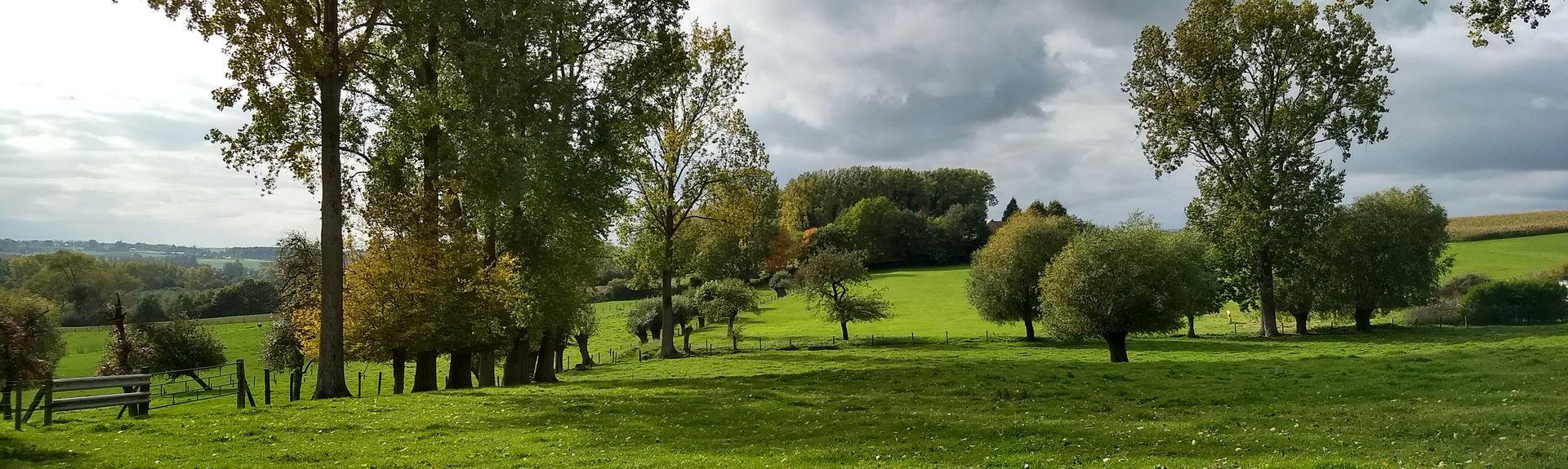 Deinze, Flemish Region, Belgium