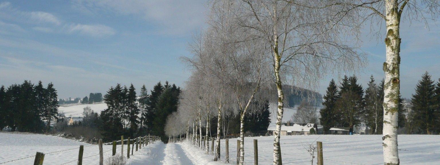 Waimes, Vallonia, BE