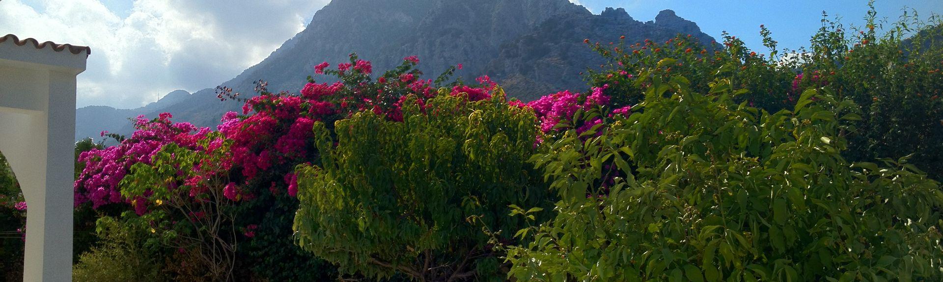Kayalar, Cyprus