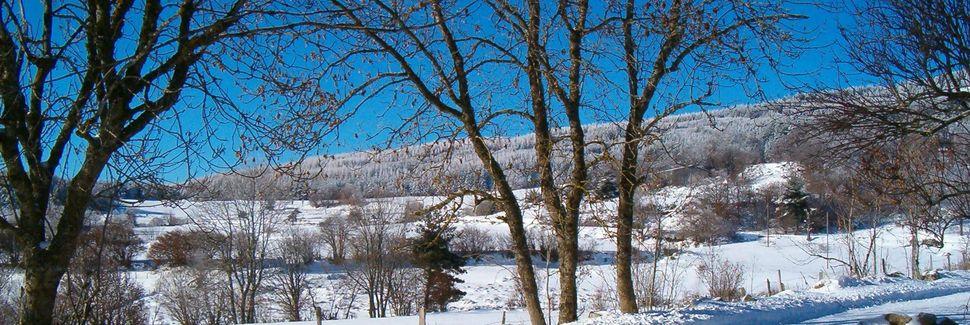 Mazeyrat-d'Allier Rougeac-Chavaniac Station, Mazeyrat-d'Allier, Auvergne-Rhône-Alpes, Frankrig