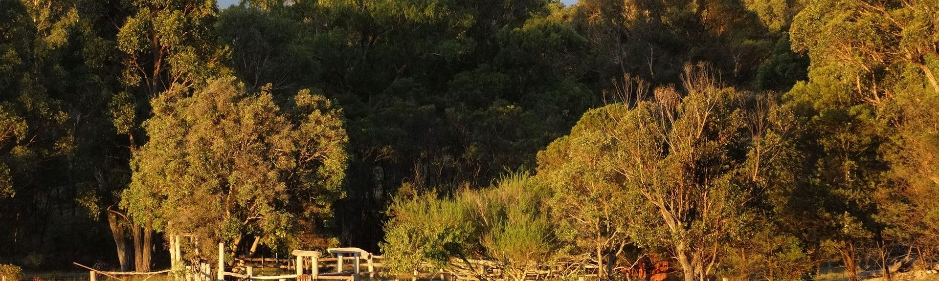 Wyberba, Queensland, Australien
