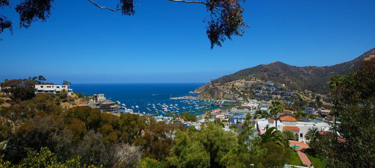 Santa Catalina Island, CA, USA