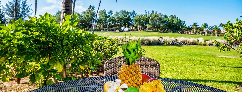 Waikoloa Beach Resort, Puako vacation rentals for 2019 ...