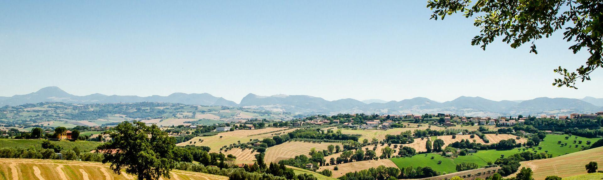 Castelbellino, Marcas, Itália