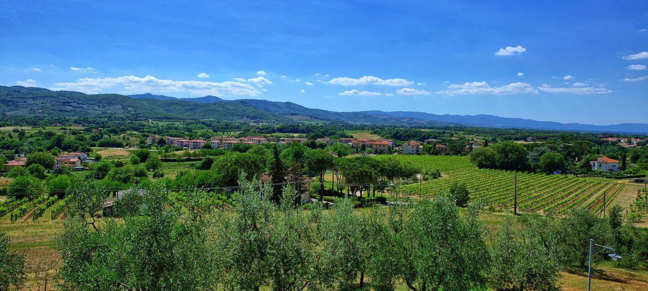 Bucine AR, Italy