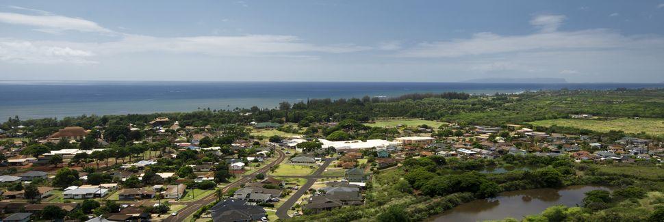 Waimea, Hawaii County, HI, USA