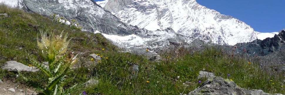 Zermatt–Furin gondolihissi, Zermatt, Valais, Sveitsi