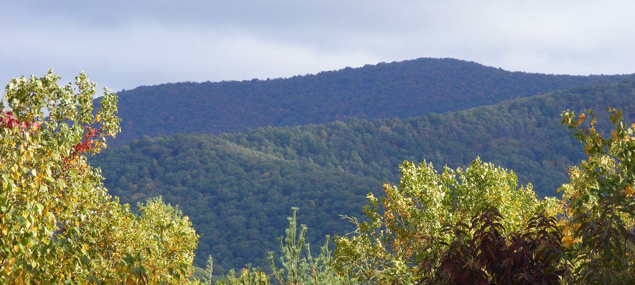Sassafras Mountain, Dahlonega, Géorgie, États-Unis d'Amérique