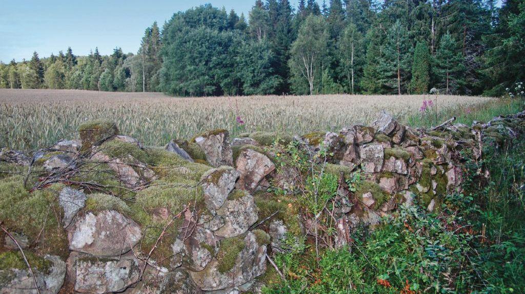 Länsi-Götanmaan lääni, Ruotsi