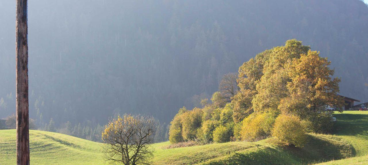 Buch bei Jenbach, Tyrol, Autriche