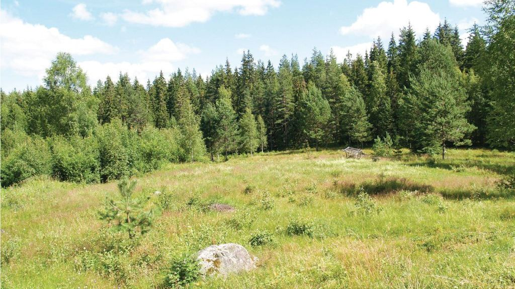 Comté de Värmland, Suède