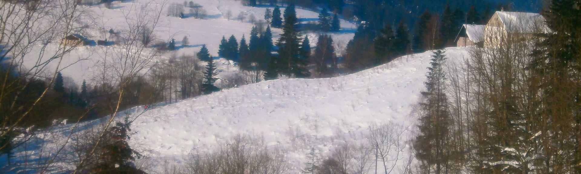 Soultz-Haut-Rhin, Haut-Rhin (department), France