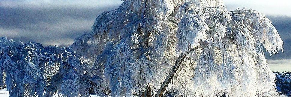 Verrières-en-Forez, Auvergne-Rhône-Alpes, France
