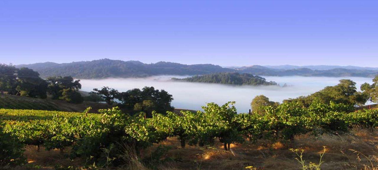 Wine Country, Californie, États-Unis d'Amérique