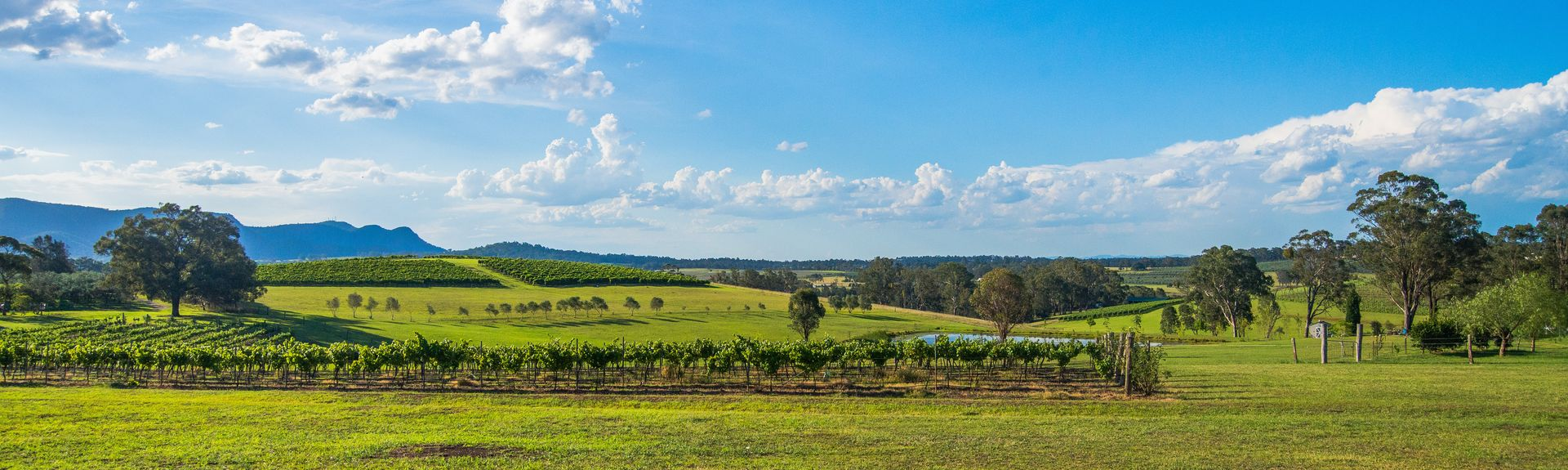 Pokolbin, Nueva Gales del Sur, Australia