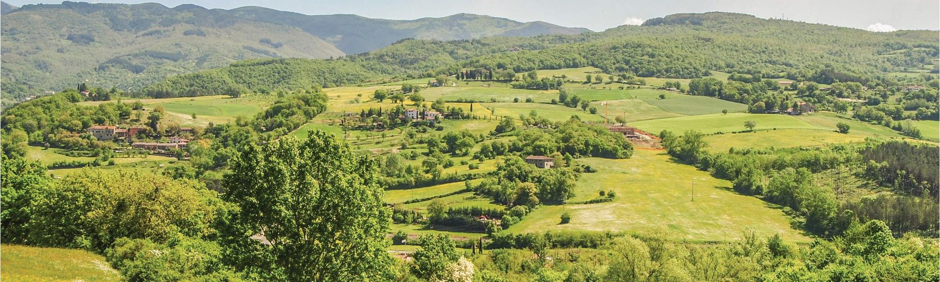 Laterina, Pergine Valdarno, Toscana, Italia