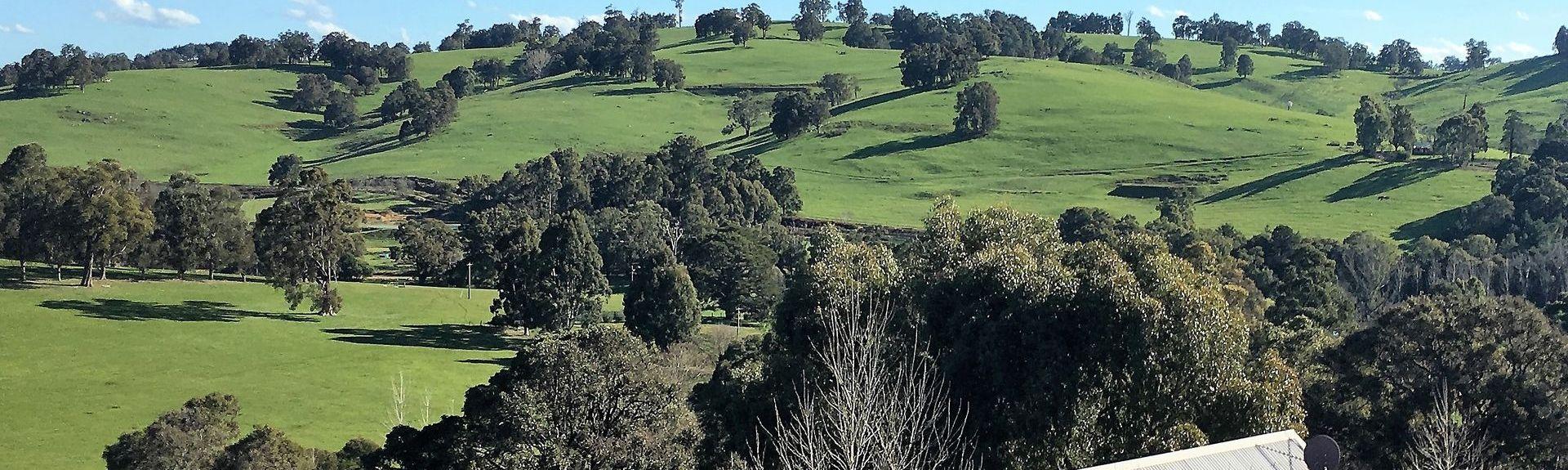 Balingup Lavender Farm, Balingup, Australie-Occidentale, Australie