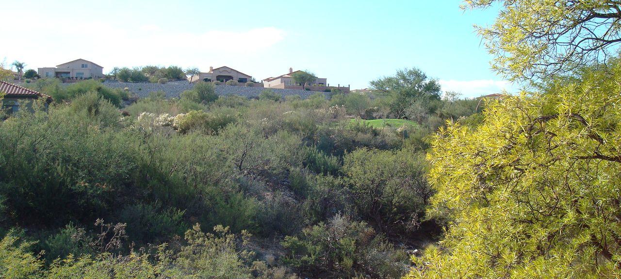 Veranda At Ventana Condominiums, Catalina Foothills, AZ, USA