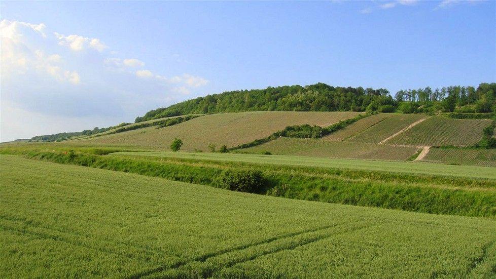 Rozoy-Bellevalle, Hauts-de-France, France