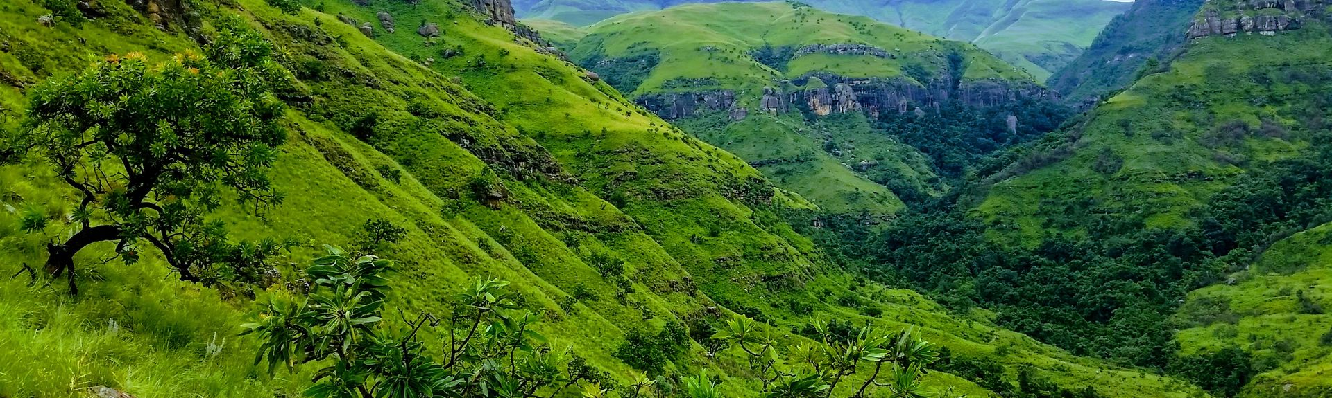 Free State, South Africa