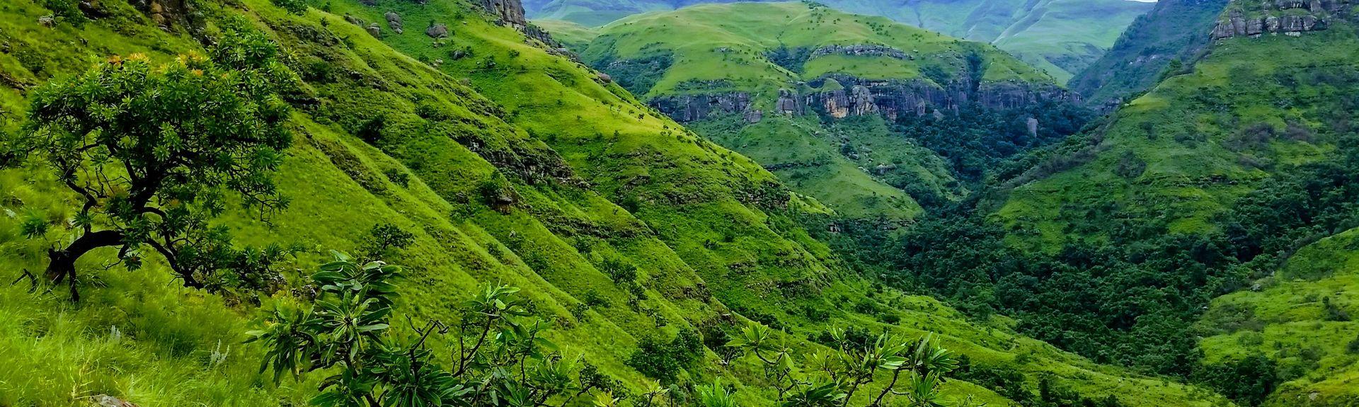 État-Libre, Afrique du Sud
