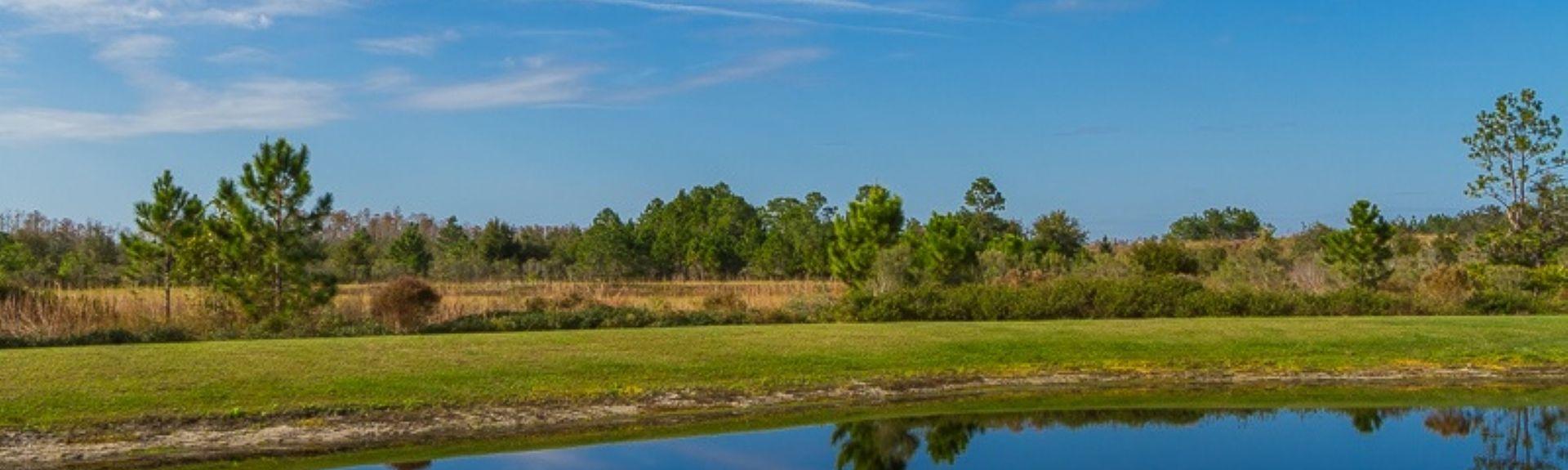 High Grove (Four Corners, Florida, Verenigde Staten)