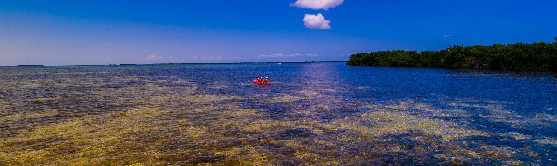 Big Pine Key, Φλόριντα, Ηνωμένες Πολιτείες