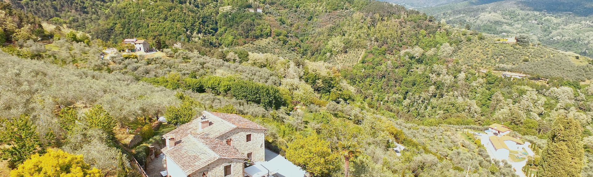 Sant'Andrea, Pistoia, Toscana, Italia