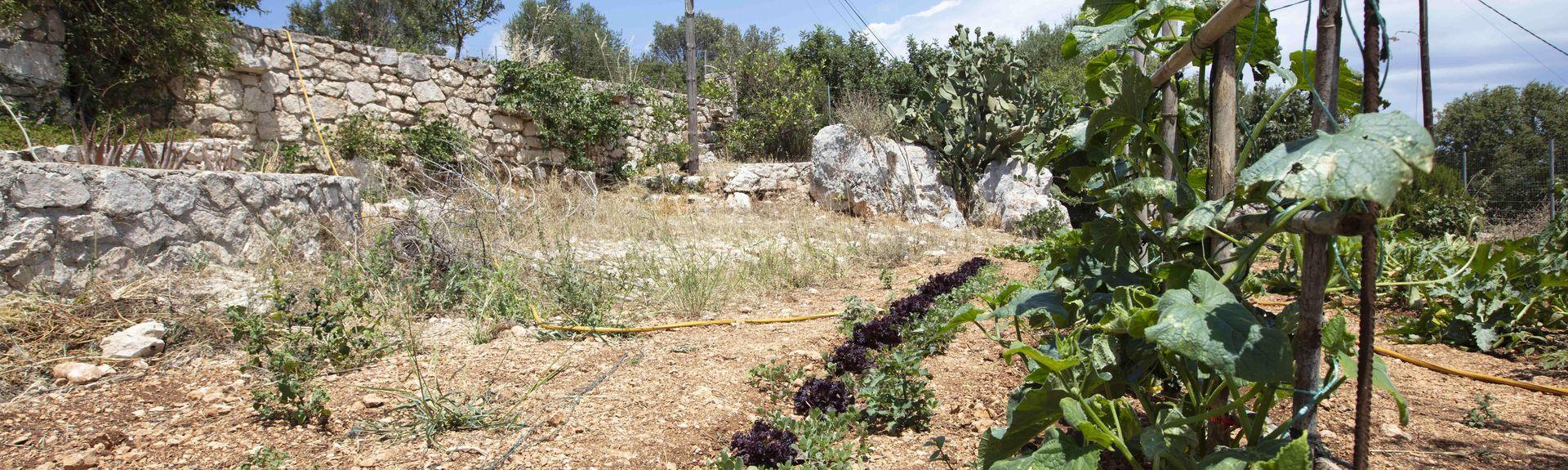 Elation, Peloponnesos, Kreikka