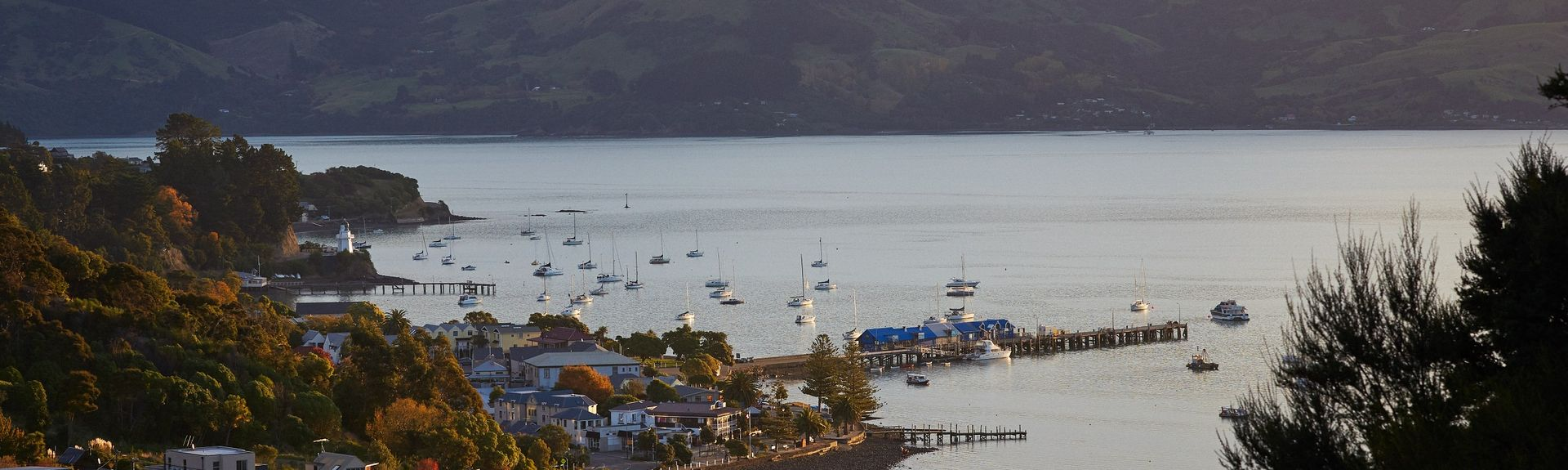 Quail Island, Christchurch, South Island, New Zealand