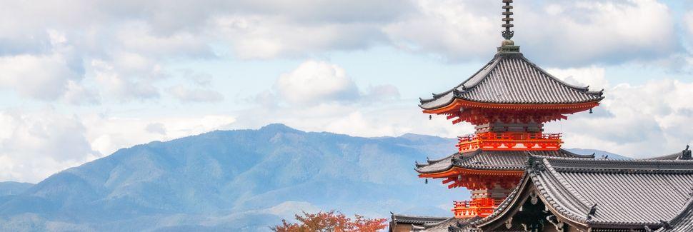 Préfecture de Kyoto, Japon