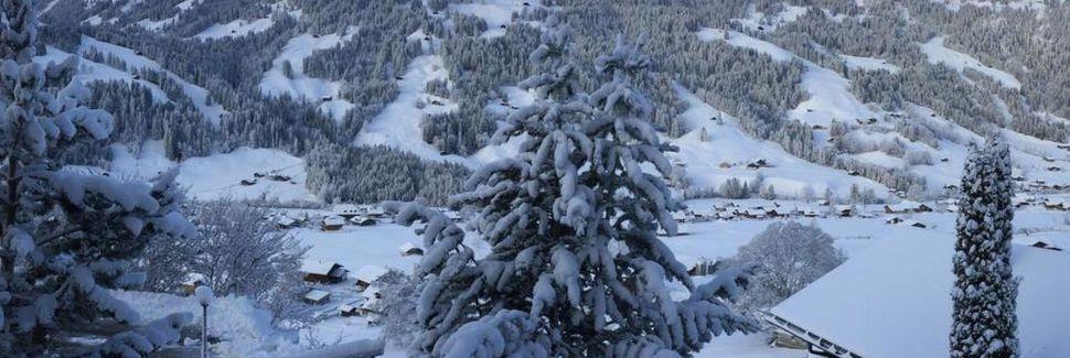 Zweisimmen, Kanton Bern, Schweiz