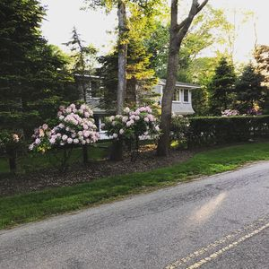 Photo for Beautiful Amagansett Getaway - Walk to Town and the Beach